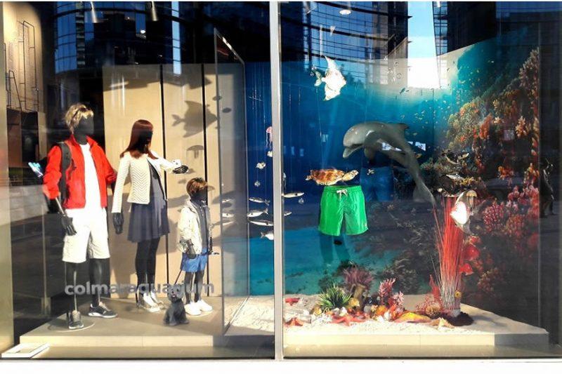 Colmar foto 3 - Shop window - by Artes Group International