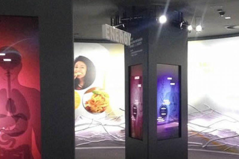 Next Group per Expo – Padiglione Svizzera foto 3 - Scenografie per eventi - by Artes Group International